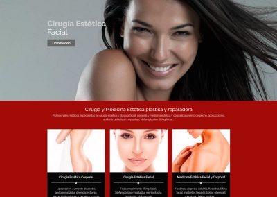 diseno-web-wordpress