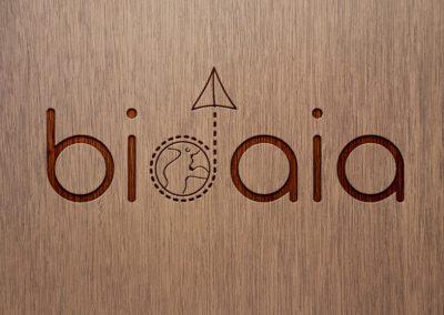 logo-bidaia